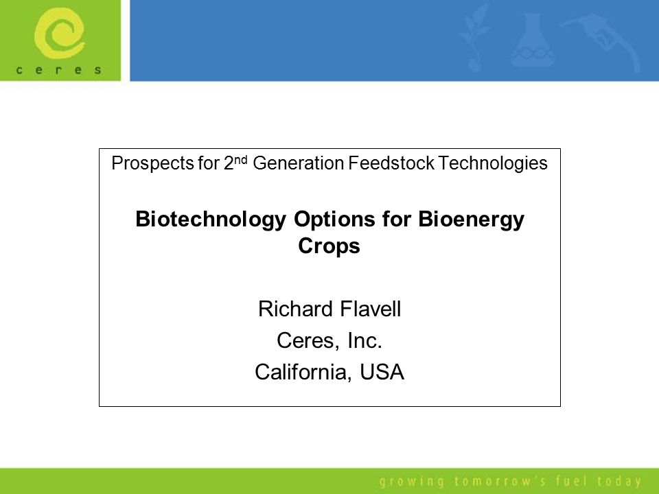 Prospects for 2 nd Generation Feedstock Technologies Biotechnology Options for Bioenergy Crops Richard Flavell Ceres, Inc. California, USA