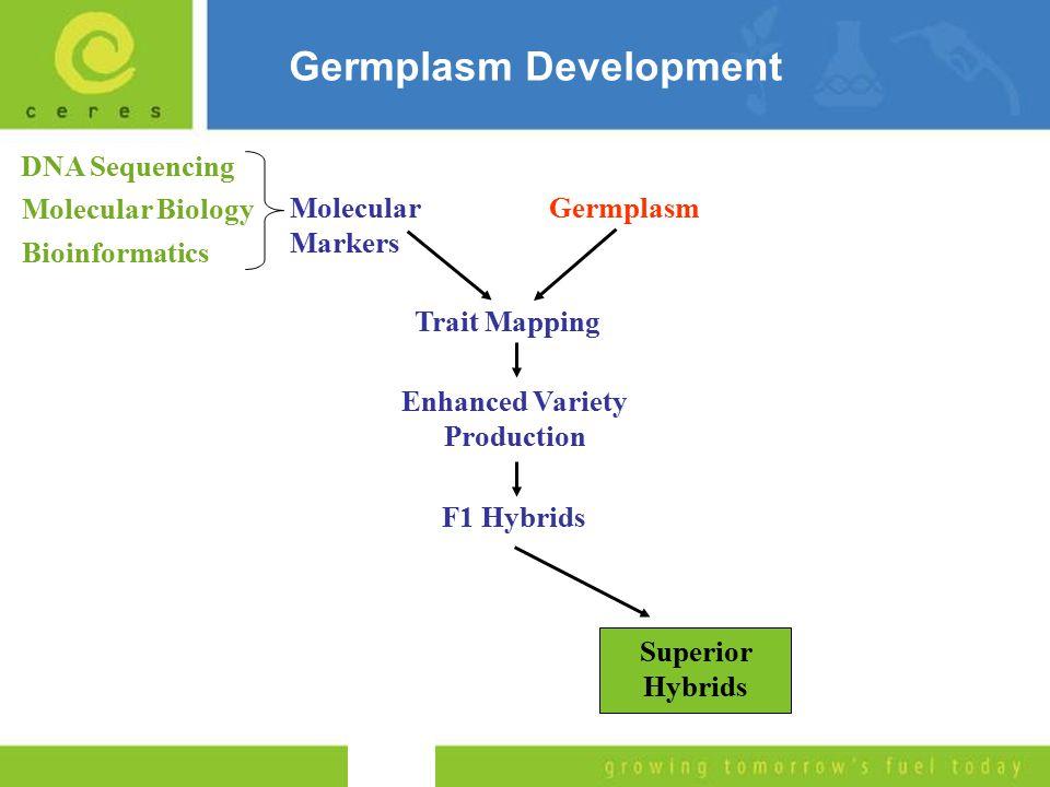 Germplasm Development GermplasmMolecular Markers Molecular Biology DNA Sequencing Bioinformatics Trait Mapping Enhanced Variety Production F1 Hybrids Superior Hybrids