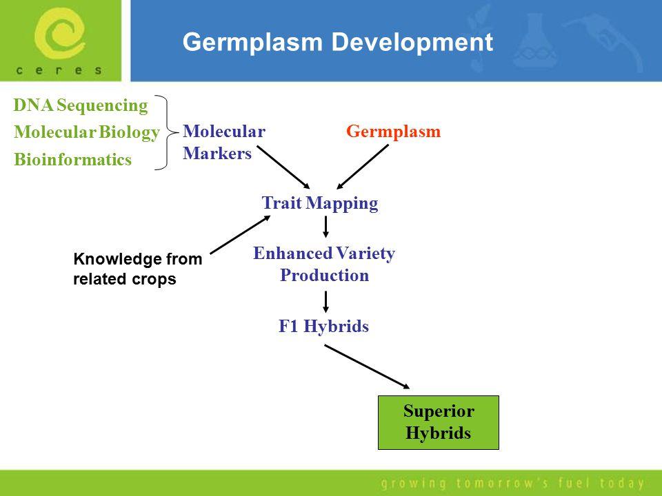 Germplasm Development GermplasmMolecular Markers Molecular Biology DNA Sequencing Bioinformatics Trait Mapping Enhanced Variety Production F1 Hybrids Superior Hybrids Knowledge from related crops