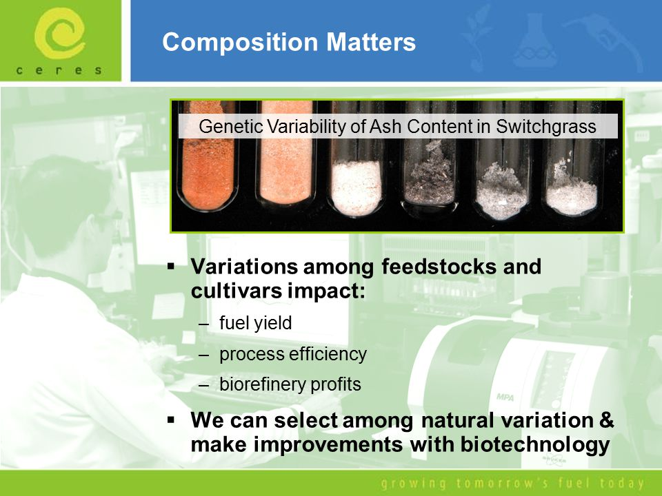 Composition Matters  Variations among feedstocks and cultivars impact: –fuel yield –process efficiency –biorefinery profits  We can select among natural variation & make improvements with biotechnology Genetic Variability of Ash Content in Switchgrass