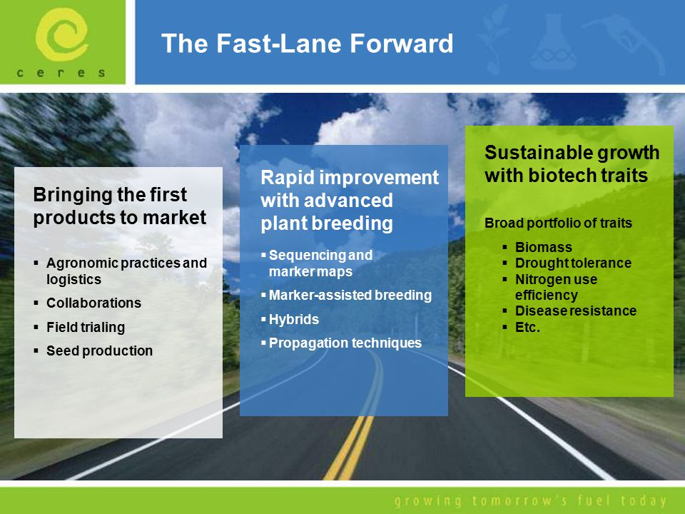The Fast-Lane Forward Bringing the first products to market  Agronomic practices and logistics  Collaborations  Field trialing  Seed production Rapid improvement with advanced plant breeding  Sequencing and marker maps  Marker-assisted breeding  Hybrids  Propagation techniques Sustainable growth with biotech traits Broad portfolio of traits  Biomass  Drought tolerance  Nitrogen use efficiency  Disease resistance  Etc.