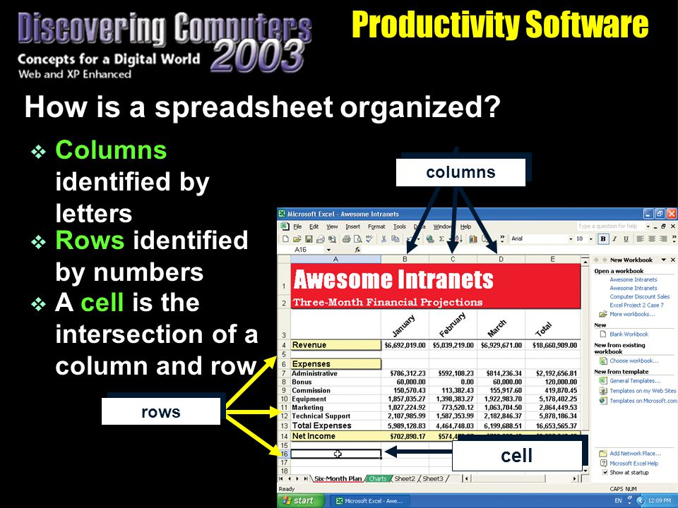 Productivity Software How is a spreadsheet organized.