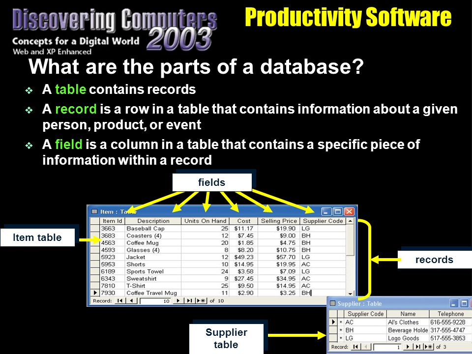 Productivity Software What are the parts of a database.
