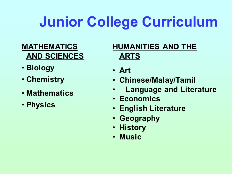 MATHEMATICS AND SCIENCES Biology Chemistry Mathematics Physics HUMANITIES AND THE ARTS Art Chinese/Malay/Tamil Language and Literature Economics English Literature Geography History Music