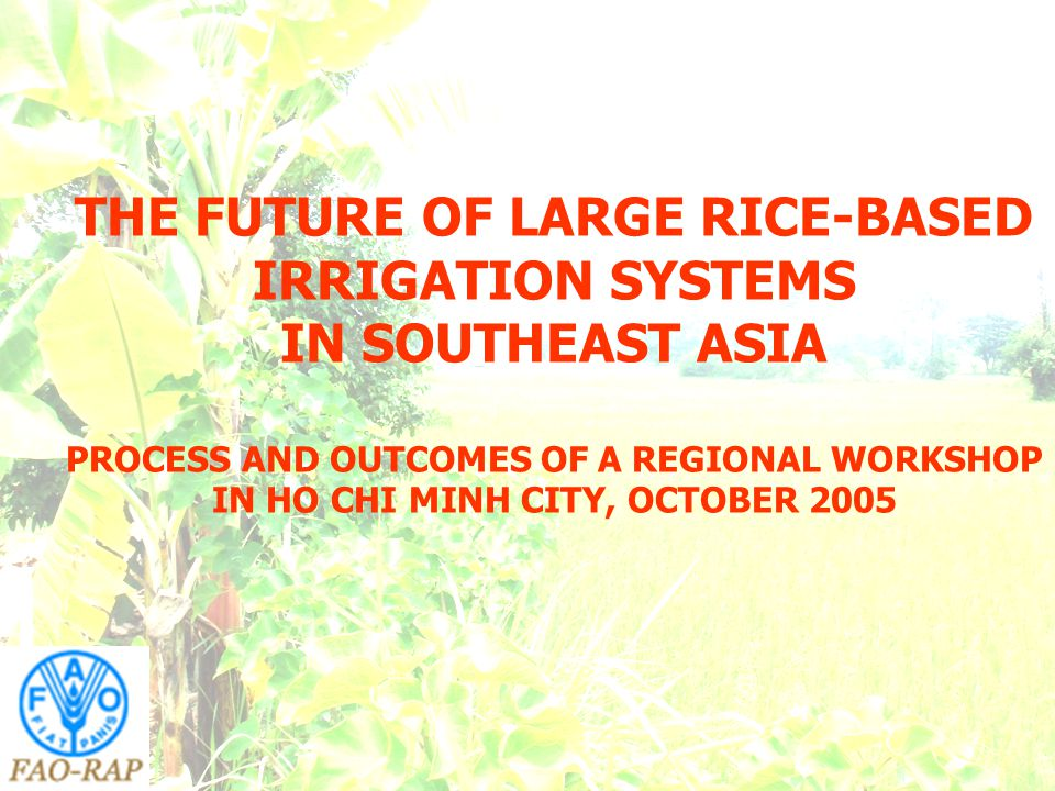 THE FUTURE OF LARGE RICE-BASED IRRIGATION SYSTEMS IN SOUTHEAST ASIA PROCESS AND OUTCOMES OF A REGIONAL WORKSHOP IN HO CHI MINH CITY, OCTOBER 2005