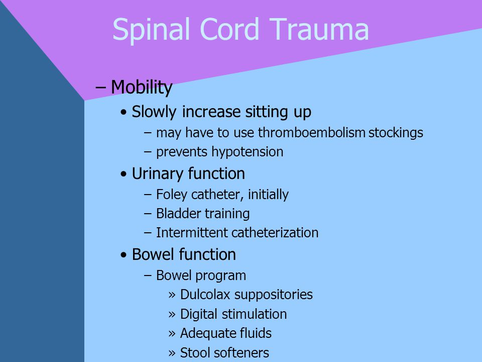 Spinal Cord Trauma –Mobility Slowly increase sitting up –may have to use thromboembolism stockings –prevents hypotension Urinary function –Foley cathe