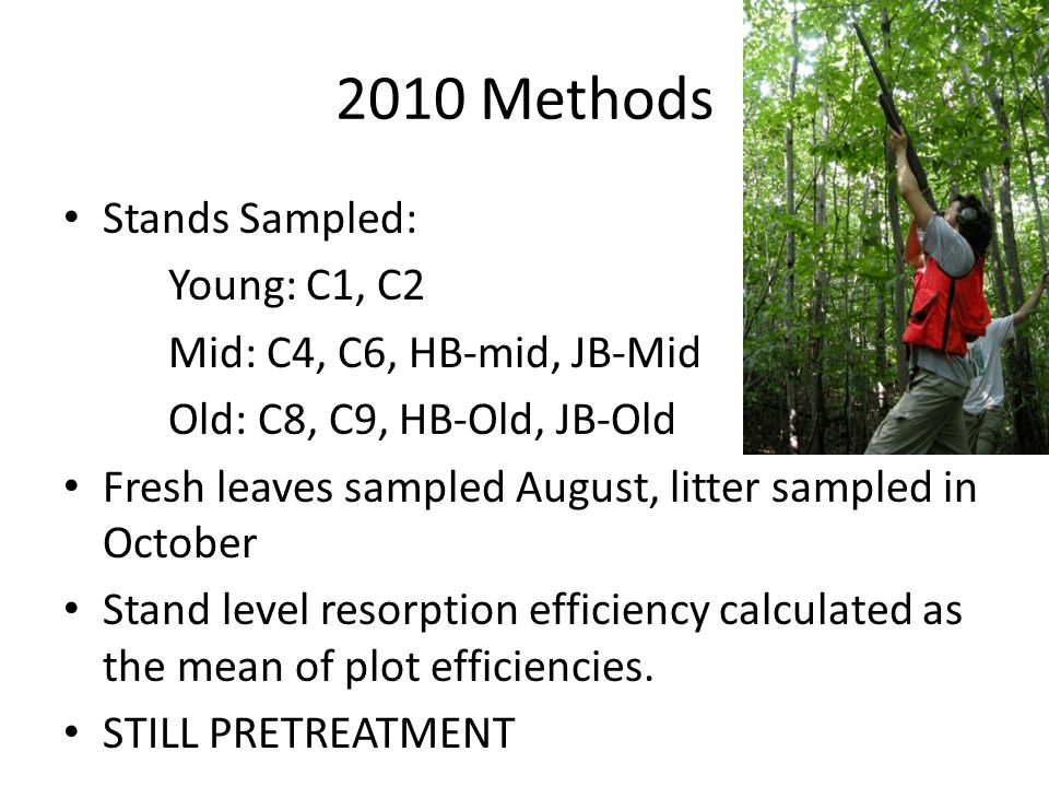 2010 Methods Stands Sampled: Young: C1, C2 Mid: C4, C6, HB-mid, JB-Mid Old: C8, C9, HB-Old, JB-Old Fresh leaves sampled August, litter sampled in Octo