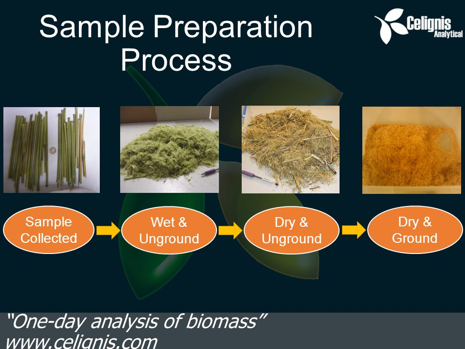 Sample Preparation Process One-day analysis of biomass www.celignis.com Sample Collected Wet & Unground Dry & Unground Dry & Ground