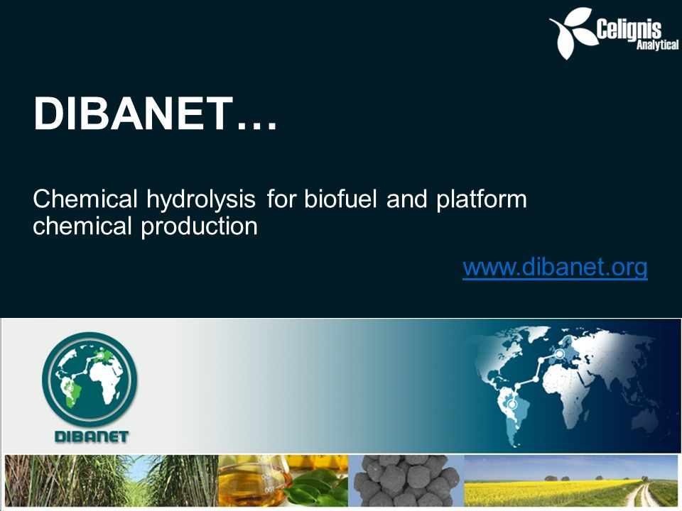 DIBANET… Chemical hydrolysis for biofuel and platform chemical production www.dibanet.org