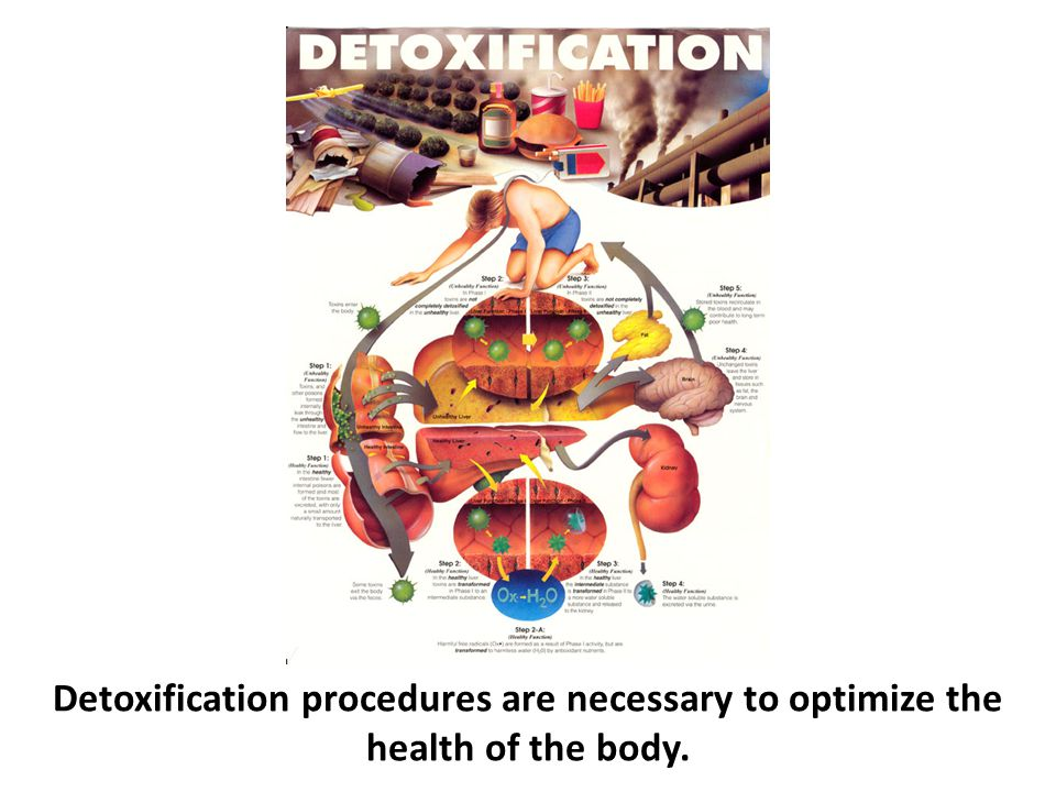 Detoxification procedures are necessary to optimize the health of the body.