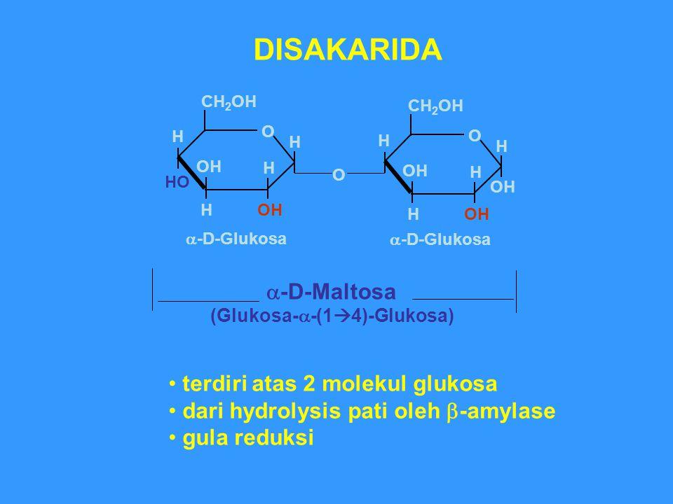 O H HO OH O H CH 2 OH H H  -D-Maltosa (Glukosa-  -(1  4)-Glukosa) O H OH H CH 2 OH H H DISAKARIDA  -D-Glukosa terdiri atas 2 molekul glukosa dari hydrolysis pati oleh  -amylase gula reduksi