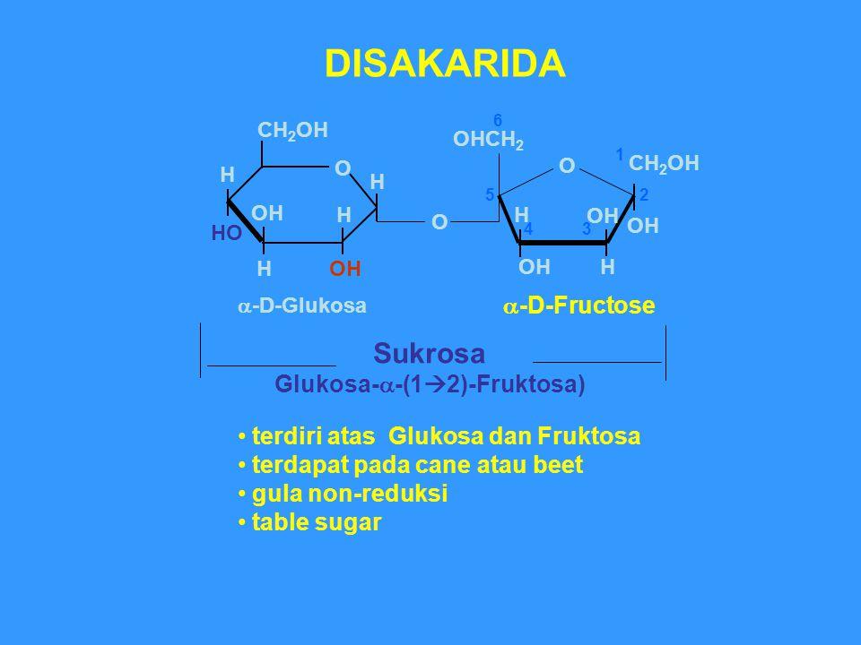 Sukrosa Glukosa-  -(1  2)-Fruktosa) DISAKARIDA terdiri atas Glukosa dan Fruktosa terdapat pada cane atau beet gula non-reduksi table sugar O H HO OH O H CH 2 OH H H  -D-Glukosa O OH CH 2 OH OHCH 2 OH H 1 2 34 5 6  -D-Fructose H