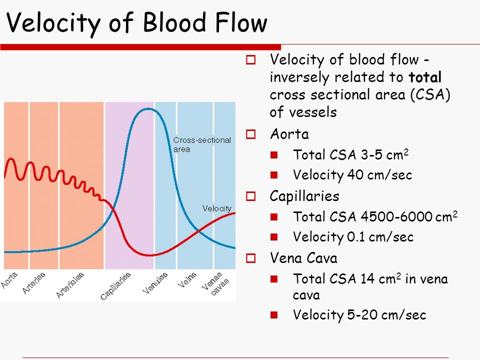 Velocity of Blood Flow  Velocity of blood flow - inversely related to total cross sectional area (CSA) of vessels  Aorta Total CSA 3-5 cm 2 Velocity 40 cm/sec  Capillaries Total CSA 4500-6000 cm 2 Velocity 0.1 cm/sec  Vena Cava Total CSA 14 cm 2 in vena cava Velocity 5-20 cm/sec