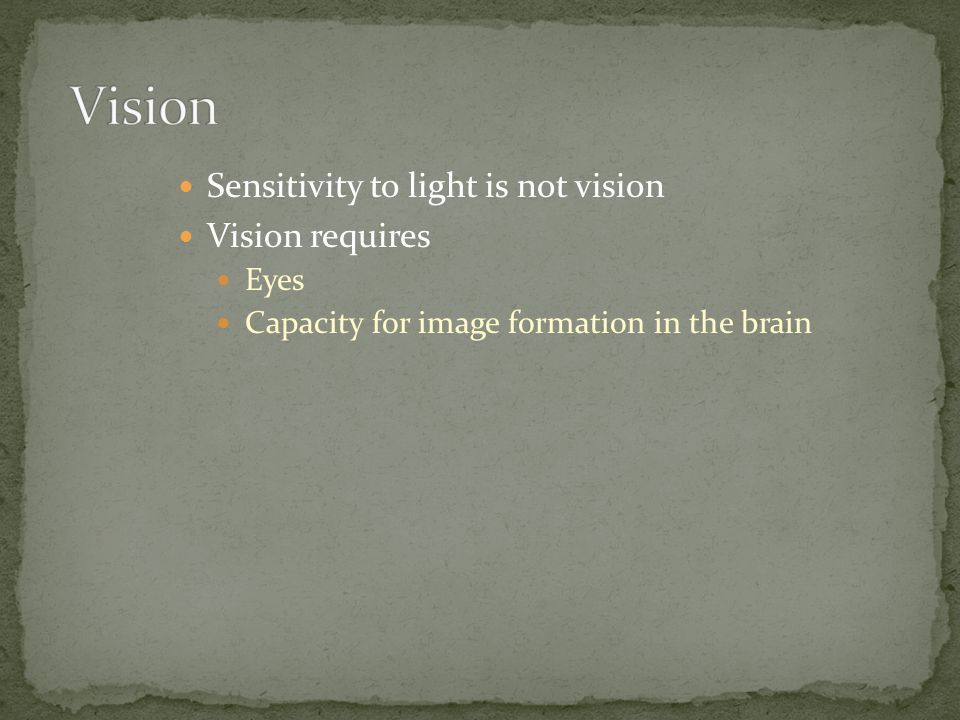 Sensitivity to light is not vision Vision requires Eyes Capacity for image formation in the brain