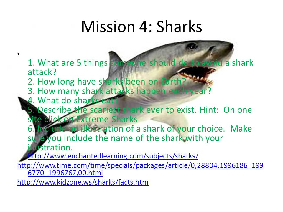 Mission 4: Sharks 1. What are 5 things someone should do to avoid a shark attack? 2. How long have sharks been on Earth? 3. How many shark attacks hap