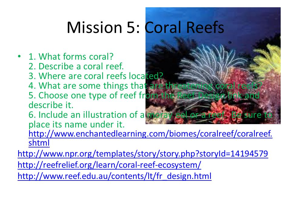 Mission 5: Coral Reefs 1. What forms coral? 2. Describe a coral reef. 3. Where are coral reefs located? 4. What are some things that are threatening c