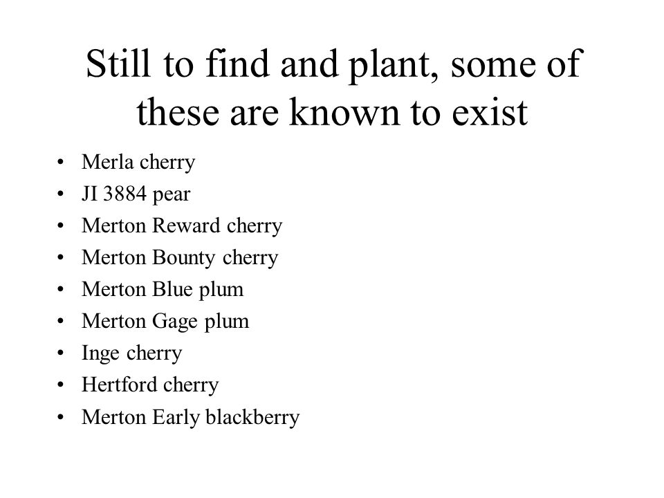 Still to find and plant, some of these are known to exist Merla cherry JI 3884 pear Merton Reward cherry Merton Bounty cherry Merton Blue plum Merton Gage plum Inge cherry Hertford cherry Merton Early blackberry