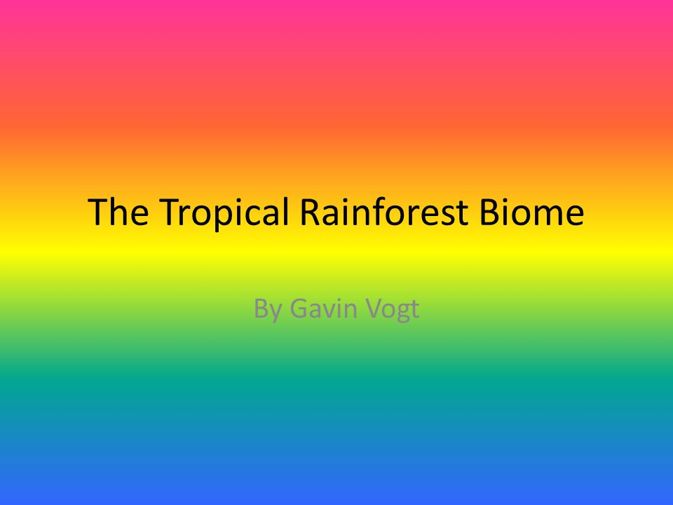The Tropical Rainforest Biome By Gavin Vogt