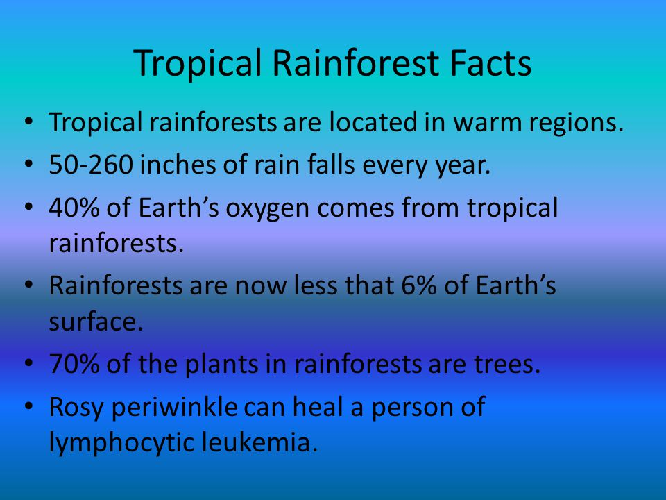 Tropical Rainforest Facts Tropical rainforests are located in warm regions. 50-260 inches of rain falls every year. 40% of Earth's oxygen comes from t
