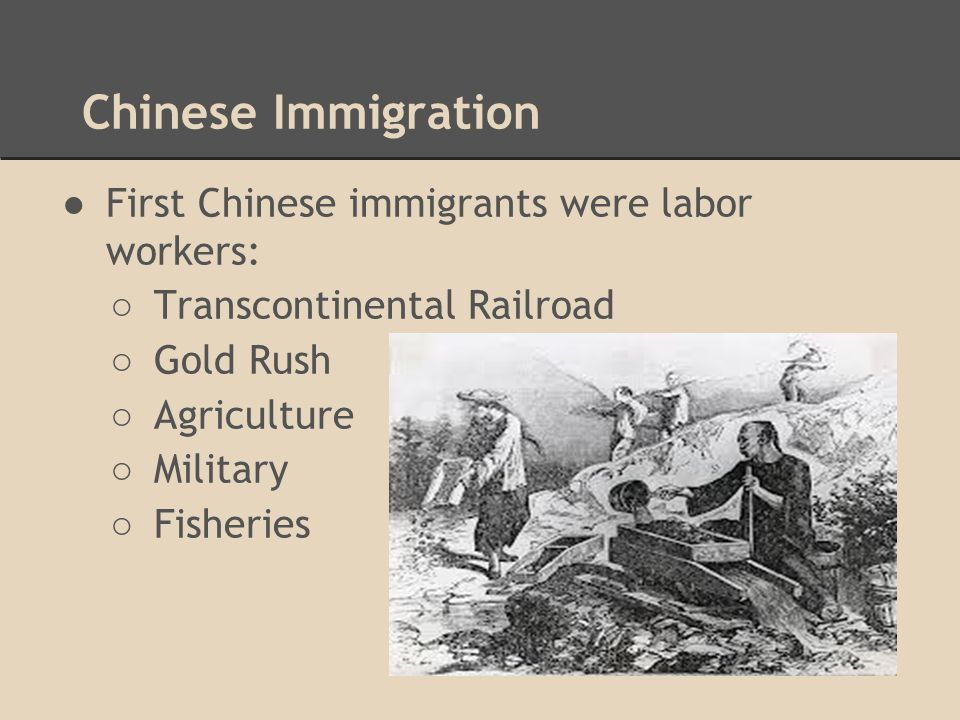 Chinese Immigration ●First Chinese immigrants were labor workers: ○ Transcontinental Railroad ○ Gold Rush ○ Agriculture ○ Military ○ Fisheries
