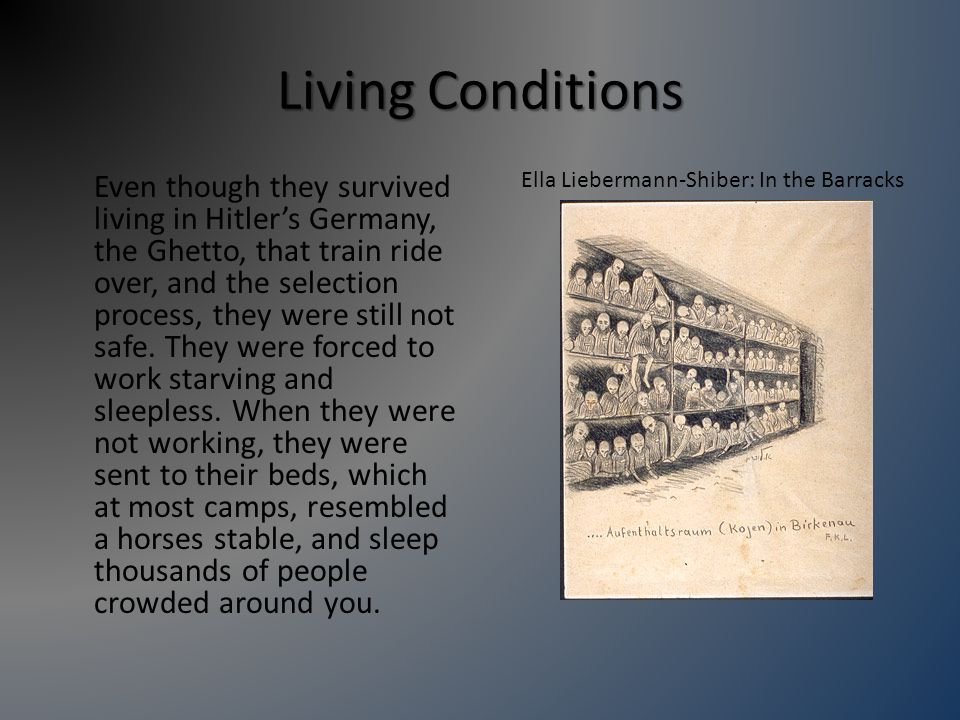 Living Conditions Even though they survived living in Hitler's Germany, the Ghetto, that train ride over, and the selection process, they were still not safe.