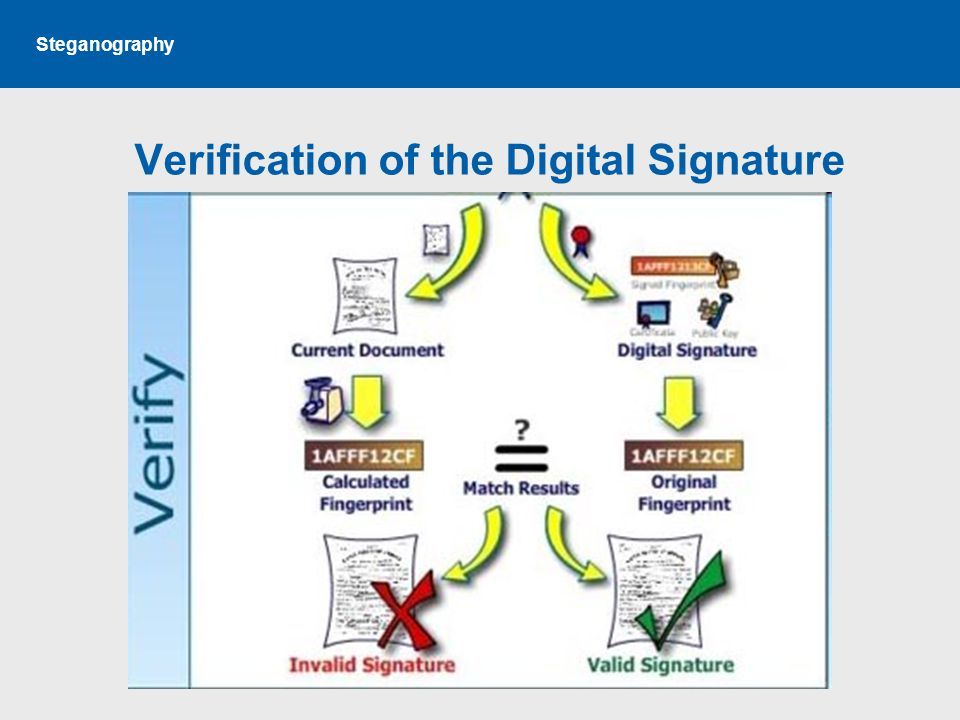 Steganography Verification of the Digital Signature