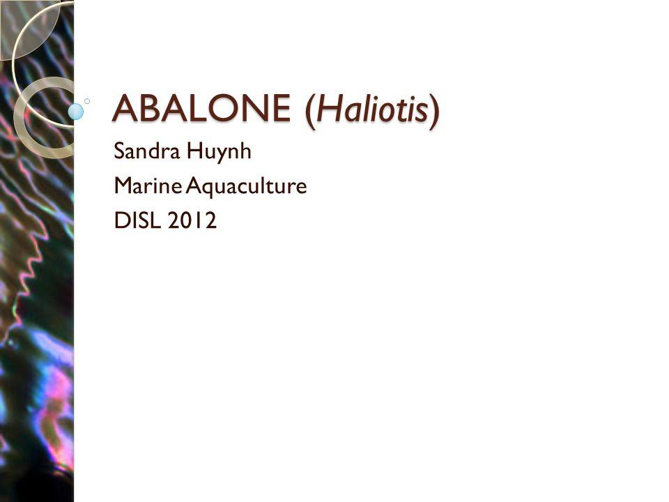 ABALONE (Haliotis) Sandra Huynh Marine Aquaculture DISL 2012