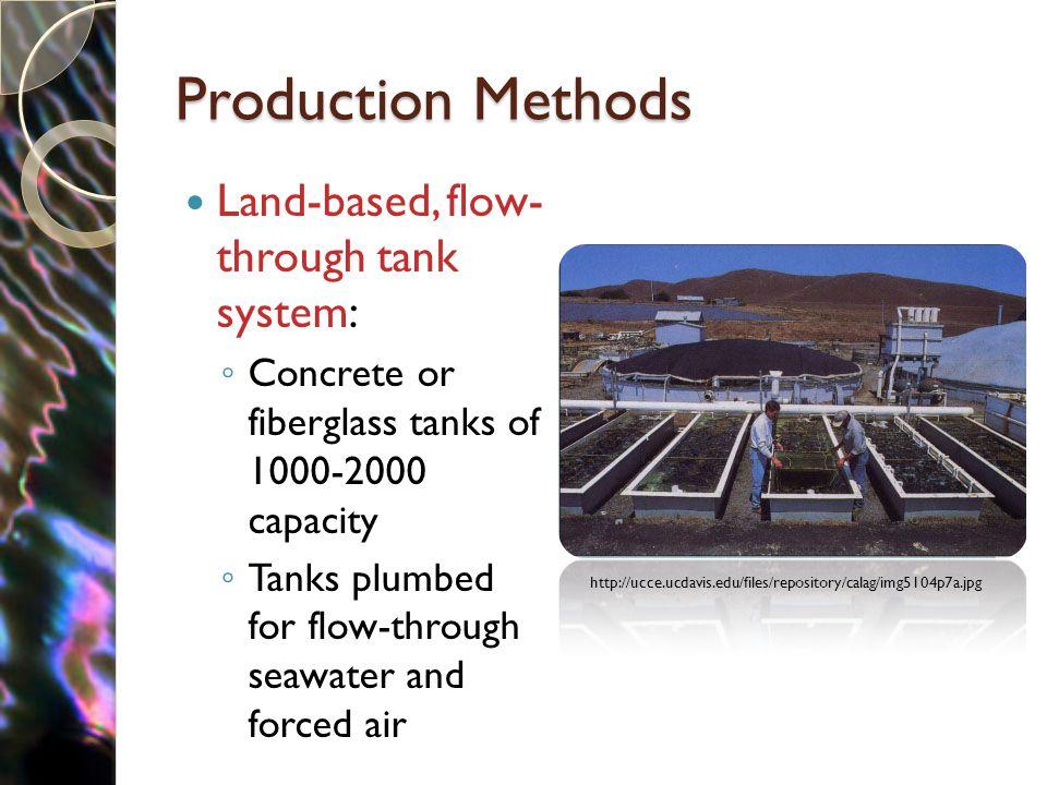 Production Methods Land-based, flow- through tank system: ◦ Concrete or fiberglass tanks of 1000-2000 capacity ◦ Tanks plumbed for flow-through seawat