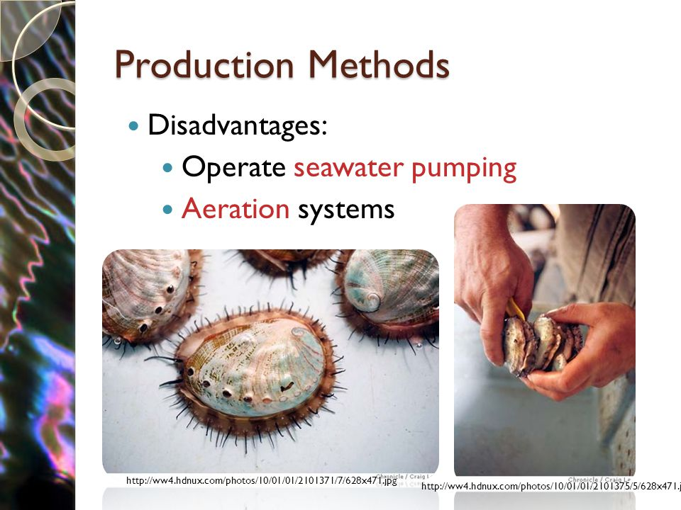 Production Methods Disadvantages: Operate seawater pumping Aeration systems http://ww4.hdnux.com/photos/10/01/01/2101371/7/628x471.jpg http://ww4.hdnux.com/photos/10/01/01/2101375/5/628x471.jpg