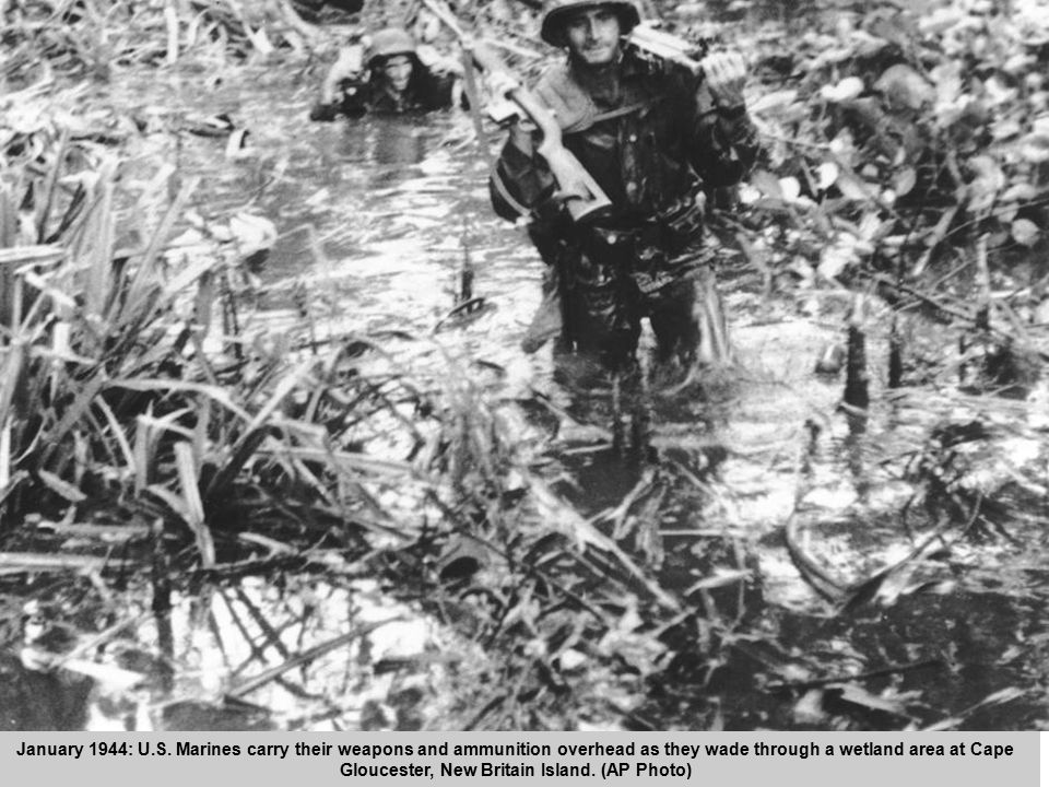 47 January 1944: U.S. Marines carry their weapons and ammunition overhead as they wade through a wetland area at Cape Gloucester, New Britain Island.