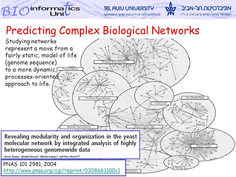 Metsada Pasmanik-Chor, TAU Bioinforamtics Unit 1 PNAS 101 2981, 2004 http://www.pnas.org/cgi/reprint/0308661100v1 Predicting Complex Biological Networks Studying networks represent a move from a fairly static, model of life (genome sequence) to a more dynamic, processes-oriented approach to life.
