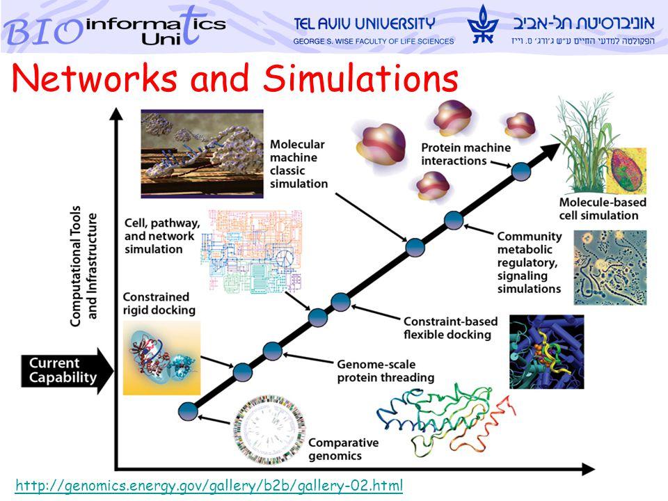 Metsada Pasmanik-Chor, TAU Bioinforamtics Unit 3 http://genomics.energy.gov/gallery/b2b/gallery-02.html Networks and Simulations