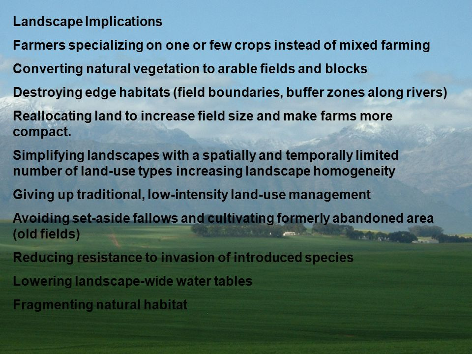 Landscape Implications Farmers specializing on one or few crops instead of mixed farming Converting natural vegetation to arable fields and blocks Destroying edge habitats (field boundaries, buffer zones along rivers) Reallocating land to increase field size and make farms more compact.