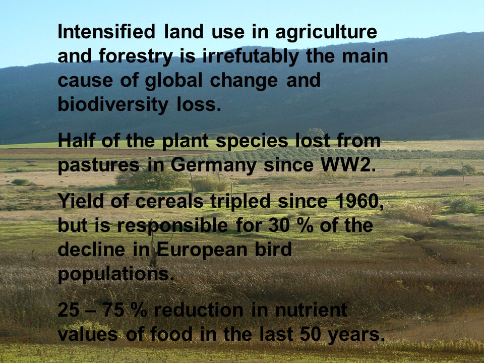 Intensified land use in agriculture and forestry is irrefutably the main cause of global change and biodiversity loss.