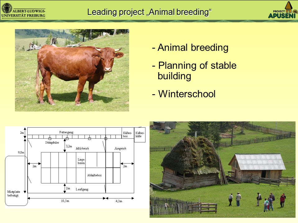 "Participation through ""Leading projects"" Grassland management and fertilisation Animal breeding, construction of stables Vegetable crops Medicinal pla"