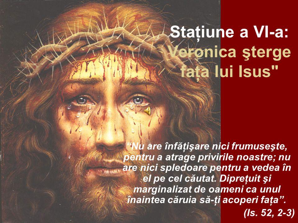 Staţiune a VI-a: Veronica şterge faţa lui Isus Nu are înfăţişare nici frumuseşte, pentru a atrage privirile noastre; nu are nici spledoare pentru a vedea în el pe cel căutat.