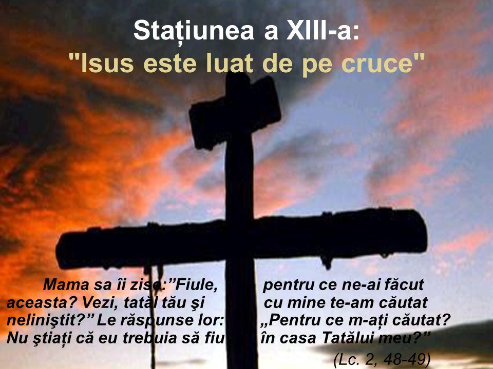 Staţiunea a XIII-a: Isus este luat de pe cruce Mama sa îi zise: Fiule, pentru ce ne-ai făcut aceasta.