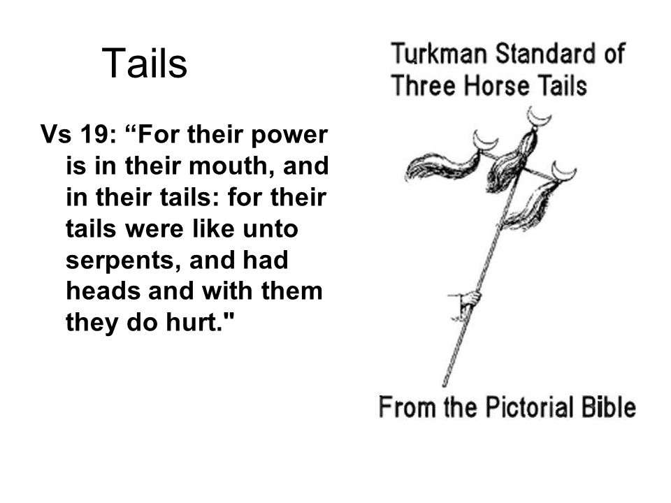 Tails Vs 19: For their power is in their mouth, and in their tails: for their tails were like unto serpents, and had heads and with them they do hurt.