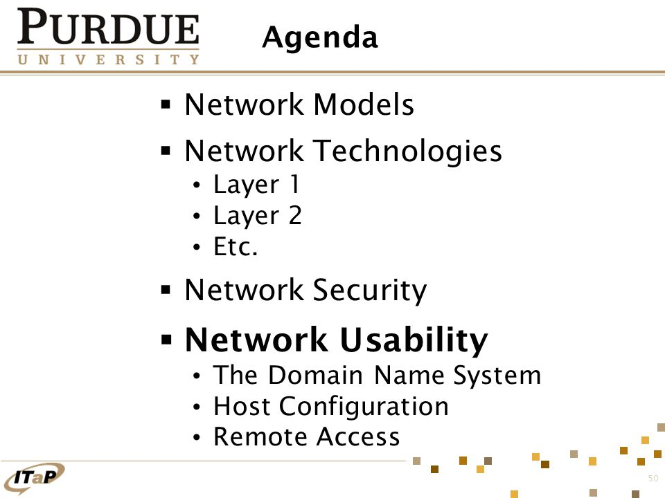 50 Agenda  Network Models  Network Technologies Layer 1 Layer 2 Etc.  Network Security  Network Usability The Domain Name System Host Configuratio