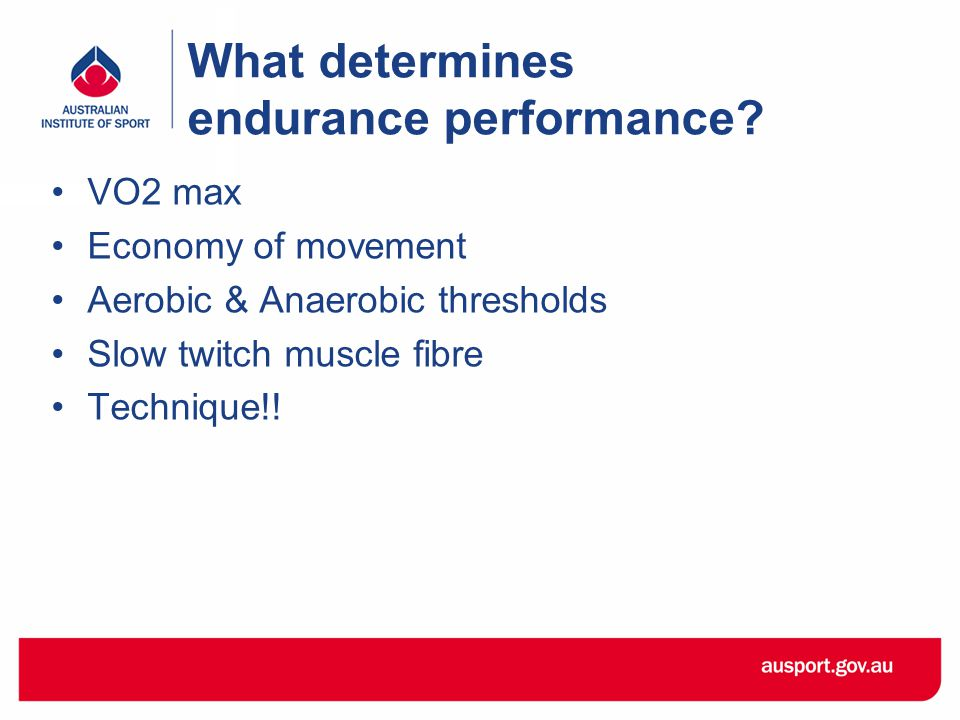 What determines endurance performance.