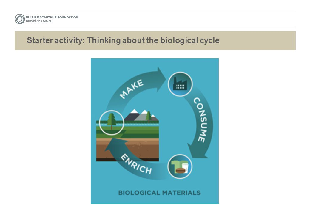 Starter activity: Thinking about the biological cycle