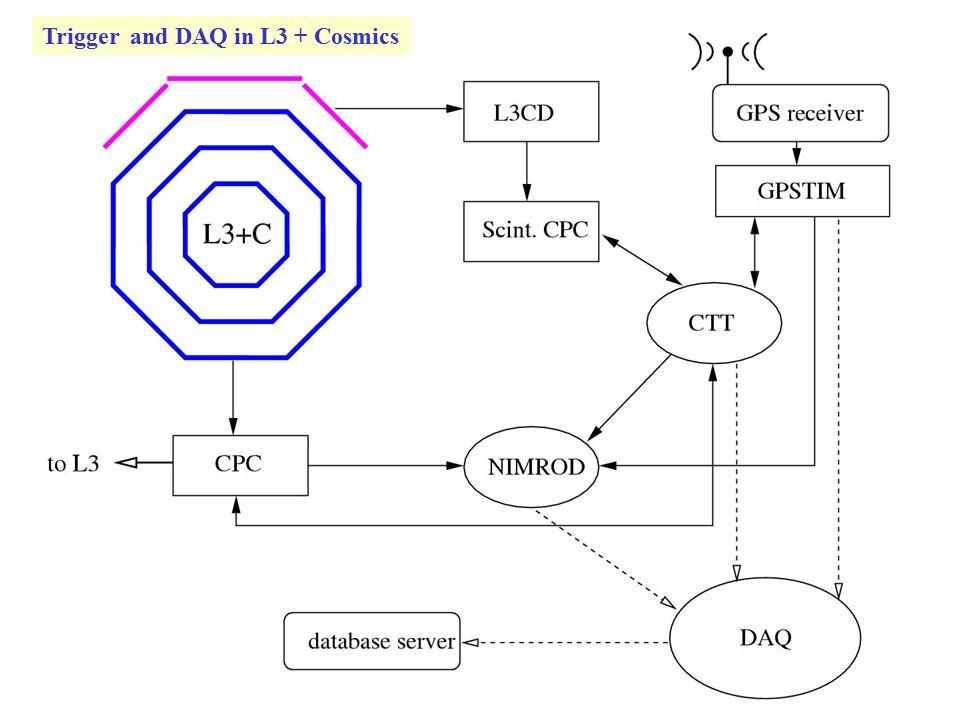 Trigger and DAQ in L3 + Cosmics