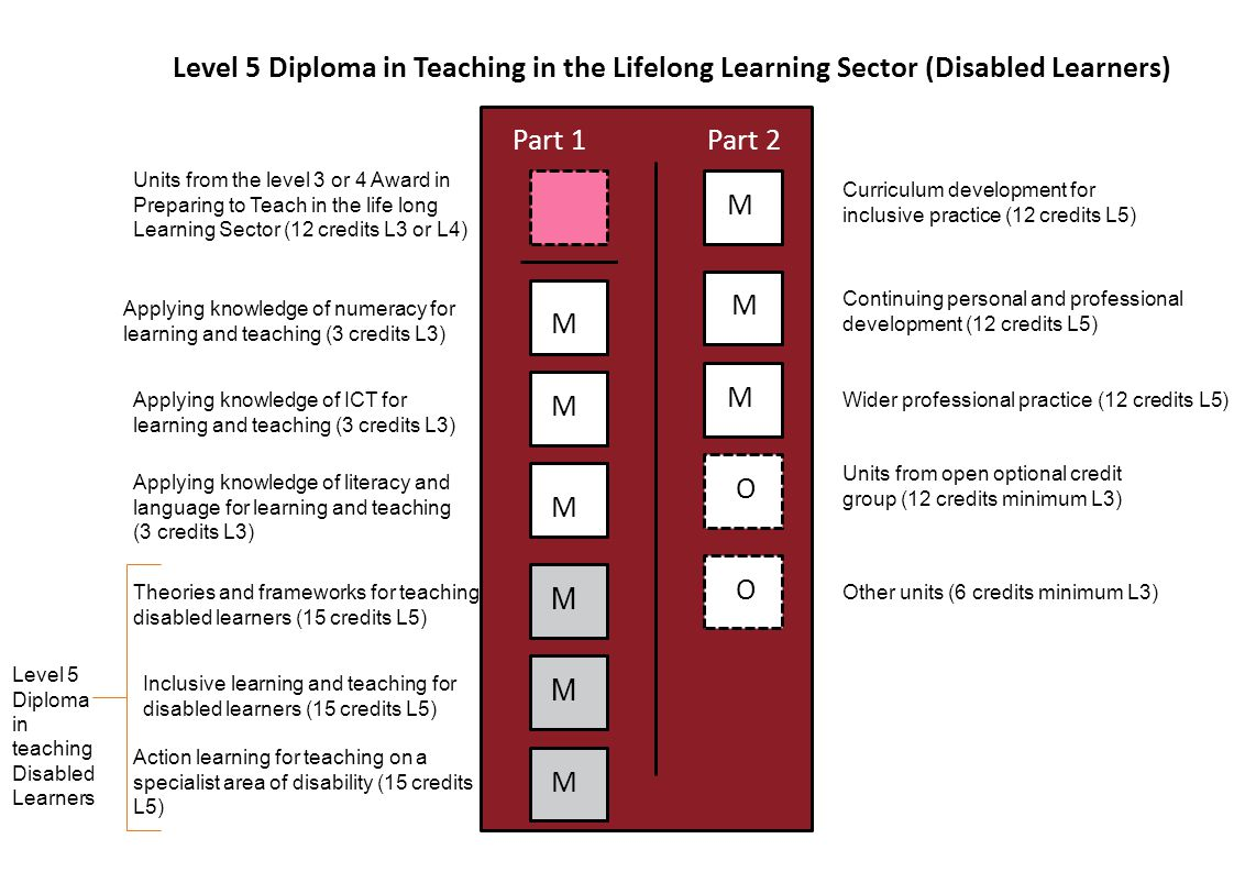 Level 5 Diploma in Teaching in the Lifelong Learning Sector (Disabled Learners) Part 1Part 2 M M M M M M M M M O O Units from the level 3 or 4 Award in Preparing to Teach in the life long Learning Sector (12 credits L3 or L4) Applying knowledge of numeracy for learning and teaching (3 credits L3) Applying knowledge of ICT for learning and teaching (3 credits L3) Applying knowledge of literacy and language for learning and teaching (3 credits L3) Theories and frameworks for teaching disabled learners (15 credits L5) Inclusive learning and teaching for disabled learners (15 credits L5) Action learning for teaching on a specialist area of disability (15 credits L5) Curriculum development for inclusive practice (12 credits L5) Units from open optional credit group (12 credits minimum L3) Wider professional practice (12 credits L5) Continuing personal and professional development (12 credits L5) Other units (6 credits minimum L3) Level 5 Diploma in teaching Disabled Learners