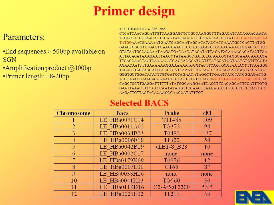 End sequences > 500bp available on SGN Amplification product @400bp Primer length: 18-20bp Primer design Parameters: >LE_HBa0051C14_SP6_end CTCATCAACAGCATTGTCAAGGAGCTCTGCCAAGGCTTTAGACATCACAGAACAACA ATGGCTATGTTAACACTCCAGTAATAGCATTTGCAATAATCCTATTACCACACAATAA TATGGAAACGAAAAATGAATCAGCAATAGCACATACCACCAAATGCCCACTTATGG GAAGTGGCGTTTGAGTGAAGGAACTTCGGGTGAATGTGCAAGAAACTGGAGCCTTCT GTATAATGCCACAAATAAGATGACAACATACATATTAGATGCAAAACACATACTTGA ATTACAGATAAAGAATTAAGCTATAAGGCGATATAGAAAGGTAGGCAAAGAAAAGA TTGACCAACTACTCAAAACATCAGCACGCATGGTTTATGCATGGTAATGTGTTTGCTA AGAACAATTTTGAAAAAAGGAAAAAATGGGTACTTCAGTGCATAATACTTTTAAGGG TGGACTTGGTAGCATGCCCCTCATCAAATTTCCAGCTTTCCAGAACTGGCGAGATAG GGGTGCTGGACATATTTGTGATGTAGAACATAGGCTTGAATCATCTATCGGAGACTG ATCTTGATCCAAGACGGAAGTTCTACTCTGTTCAGTAGCTGTAGAATCTTGCCTCCCA CAGCTGCTTGAGGATTTTTTATATGGCAAGGAATCAGCTTCACAGCACTCCATTTGTG GAATTAAACTTTCAACCAATATAGGTTCCAACTTAACAGTCTCTATCTCCCCACCTCC AAGATTGTTACTACACAAGCCAACCATATTTGT Selected BACS