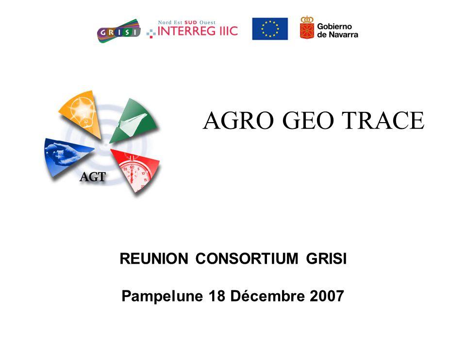 AGRO GEO TRACE REUNION CONSORTIUM GRISI Pampelune 18 Décembre 2007