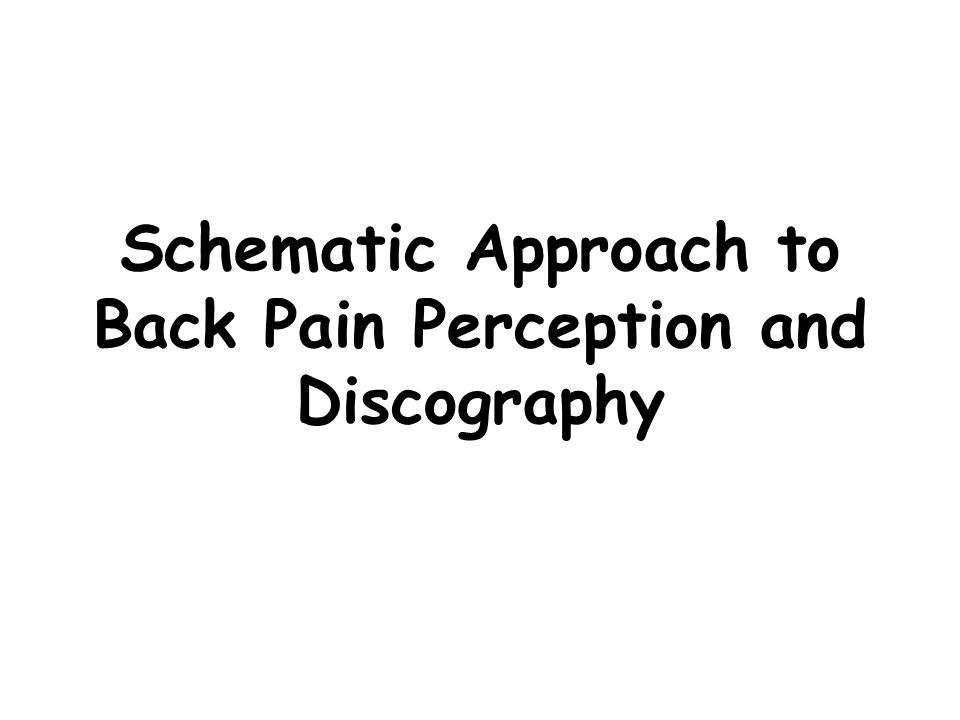 Schematic Approach to Back Pain Perception and Discography