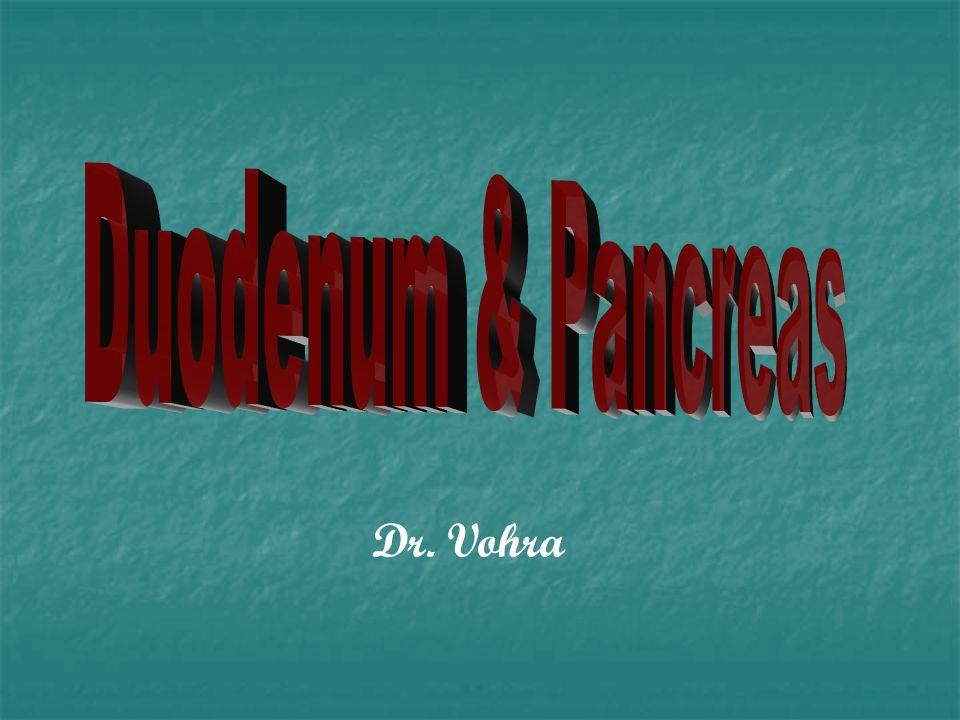 Dr. Vohra
