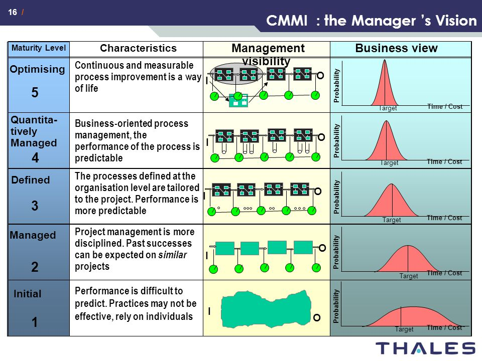 16 / CMMI : the Manager 's Vision Maturity Level Characteristics Business view Optimising Continuous and measurable process improvement is a way of li