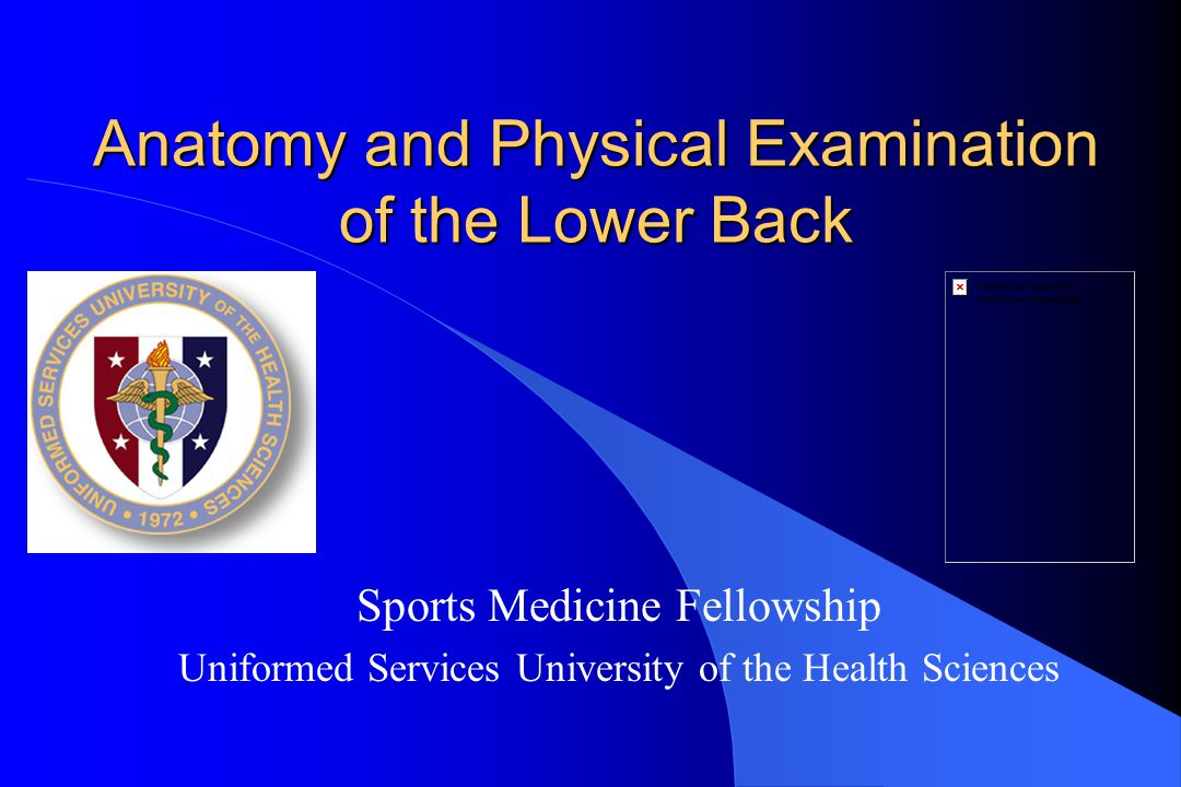 Anatomy and Physical Examination of the Lower Back Sports Medicine Fellowship Uniformed Services University of the Health Sciences