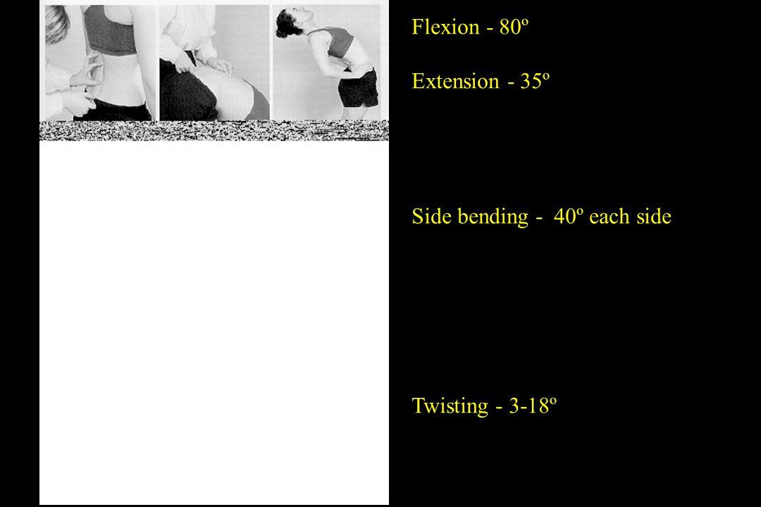 Flexion - 80º Extension - 35º Side bending - 40º each side Twisting - 3-18º